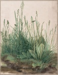 Albrecht Dürer - Large Piece of Turf