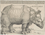 Albrecht Dürer - Rhinoceros