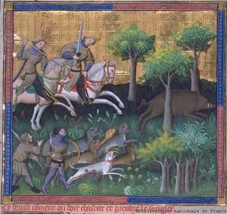 gawain boar.jpg