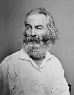 "Walt Whitman, ""A Sight in Camp in the Daybreak Gray and Dim"""