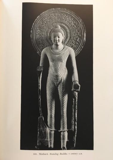 img_1911