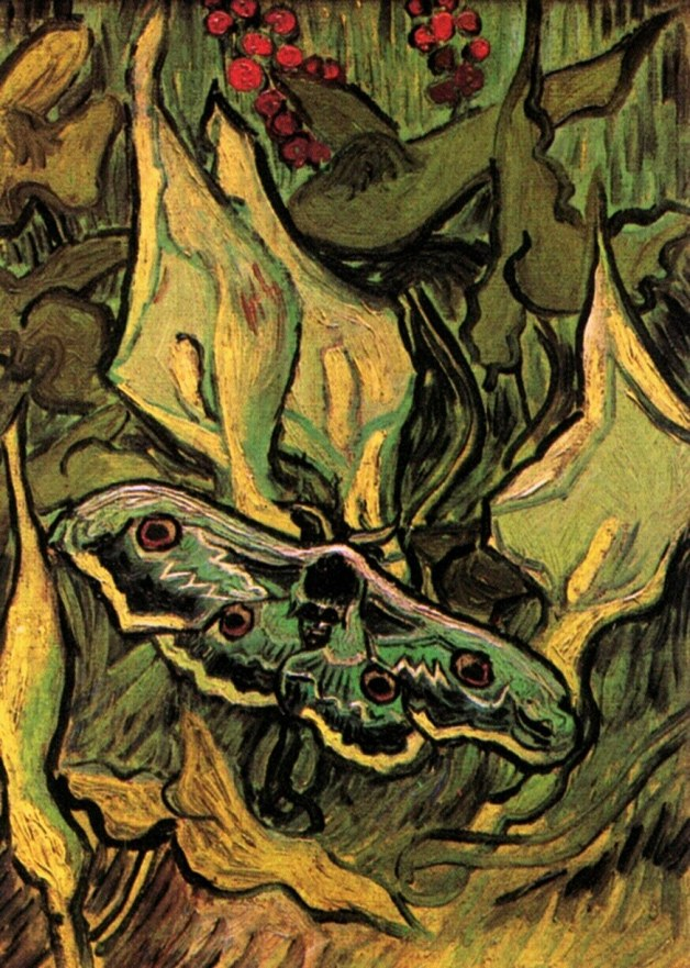 Van Gogh - Great Peacock Moth - 1889