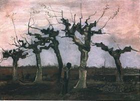 Van Gogh - Landscape with Pollard Willows - 1884