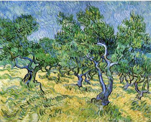 Van Gogh - Olive Grove - 1889