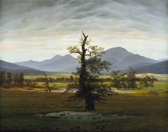 Friedrich - Solitary Tree - 1822