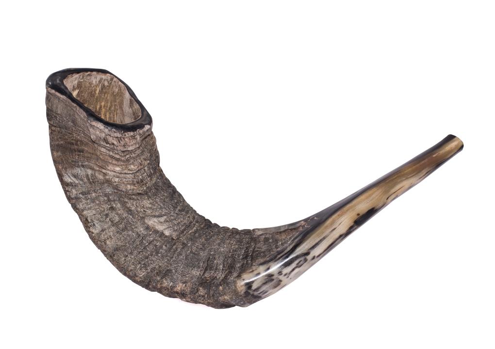 Shofar (Jewish ritual horn)  שופר